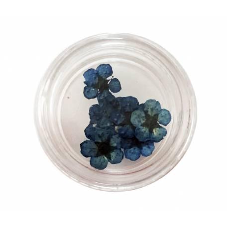 Купити Хоцветы для декору нігтів Nails World незабудка 07 - блакитні