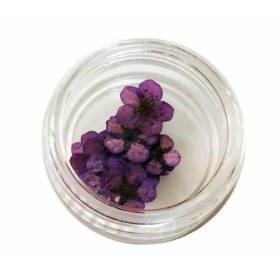 Хоцветы для декора ногтей Nails World зонтик 03 - фиолетовый
