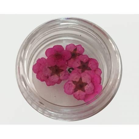 Купить Хоцветы для декора ногтей Nails World незабудка 06 - розовые