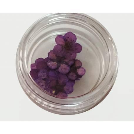 Купити Хоцветы для декору нігтів Nails World незабудка 09 - фіолетові