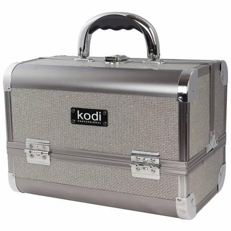 Купить Кейс для косметики Kodi Professional №45 (Серебренное сияние)