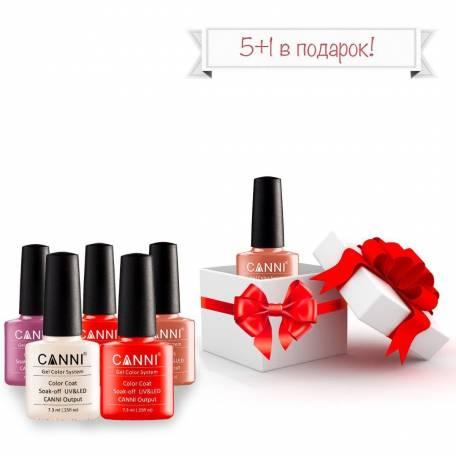 Купить Набор гель-лаков Canni 5+1 в подарок