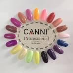 Купить Стартовый набор гель-лаков Canni (без лампы)