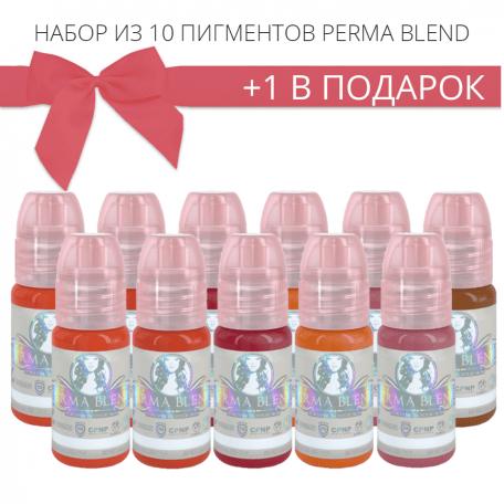 Купить Набор пигментов для татужа Perma Blend 10 + 1 в подарок