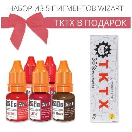 Купить Набор пигментов WizArt + TKTX в подарок